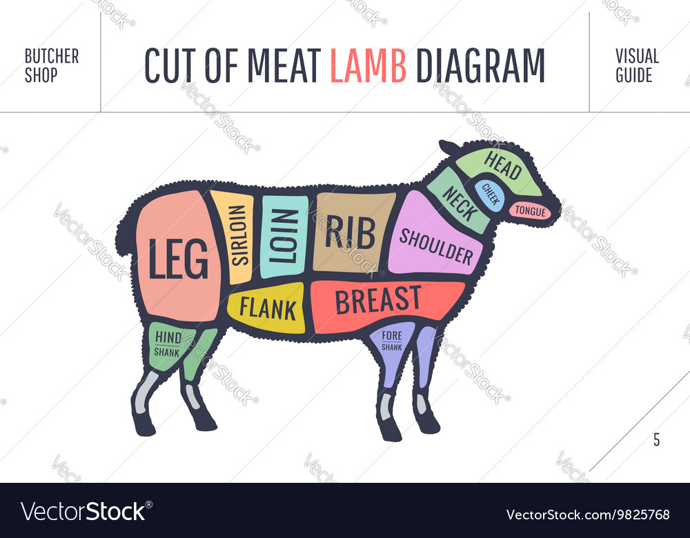 Cut Of Beef Set Poster Butcher Diagram And Scheme Vector Image