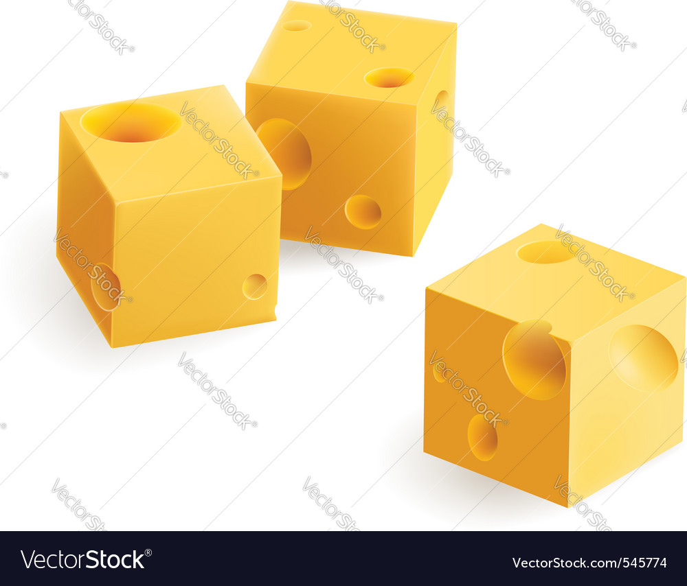 Cheese snack vector image