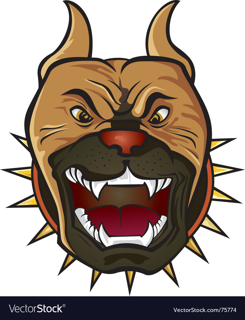 Pit bull terrier vector image