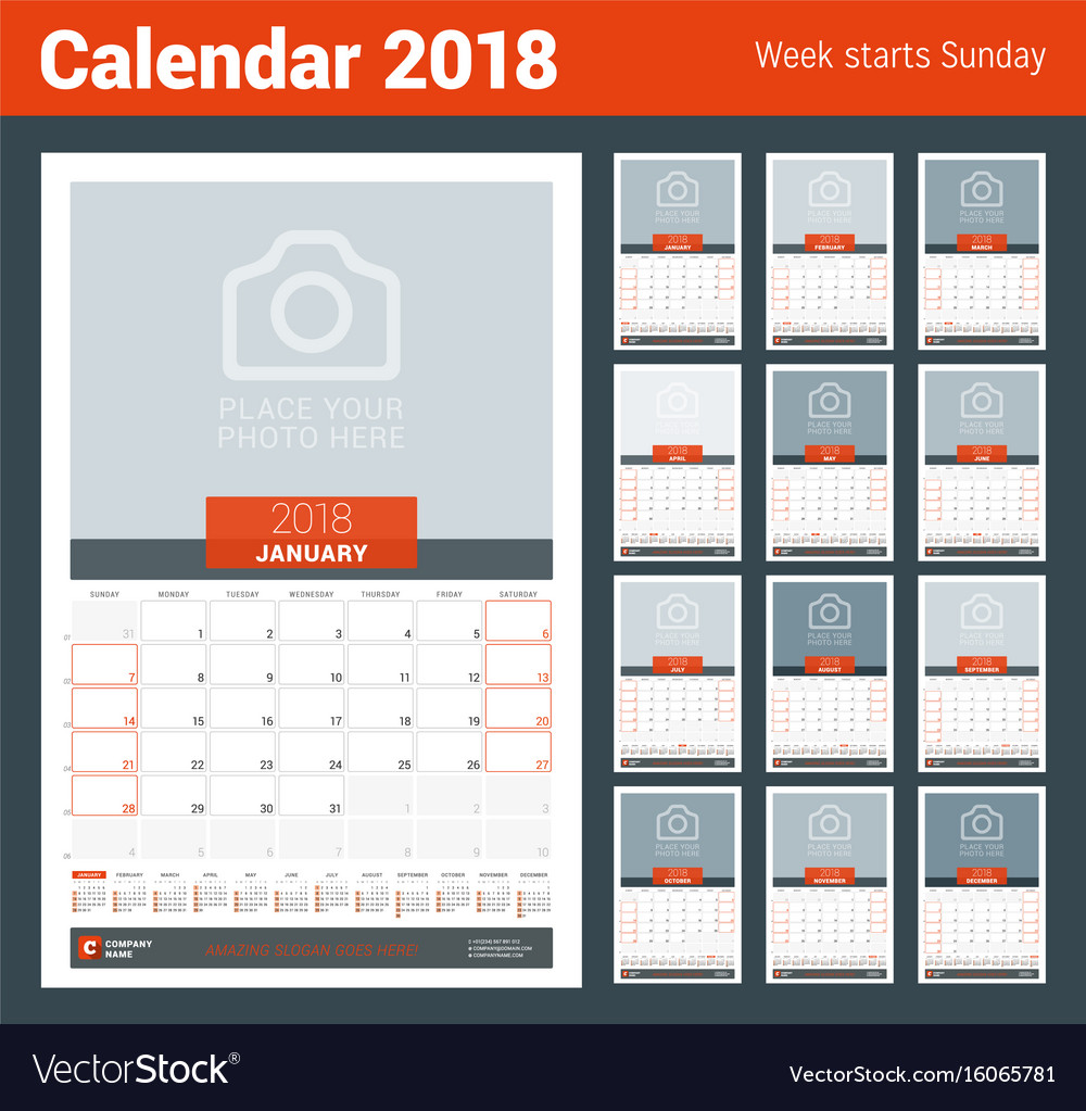 Monthly calendar planner for 2018 year design vector image