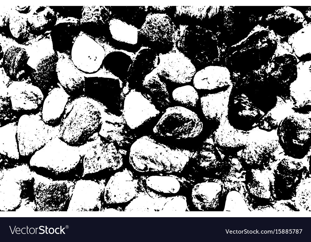 Sea stones background black and white vector image