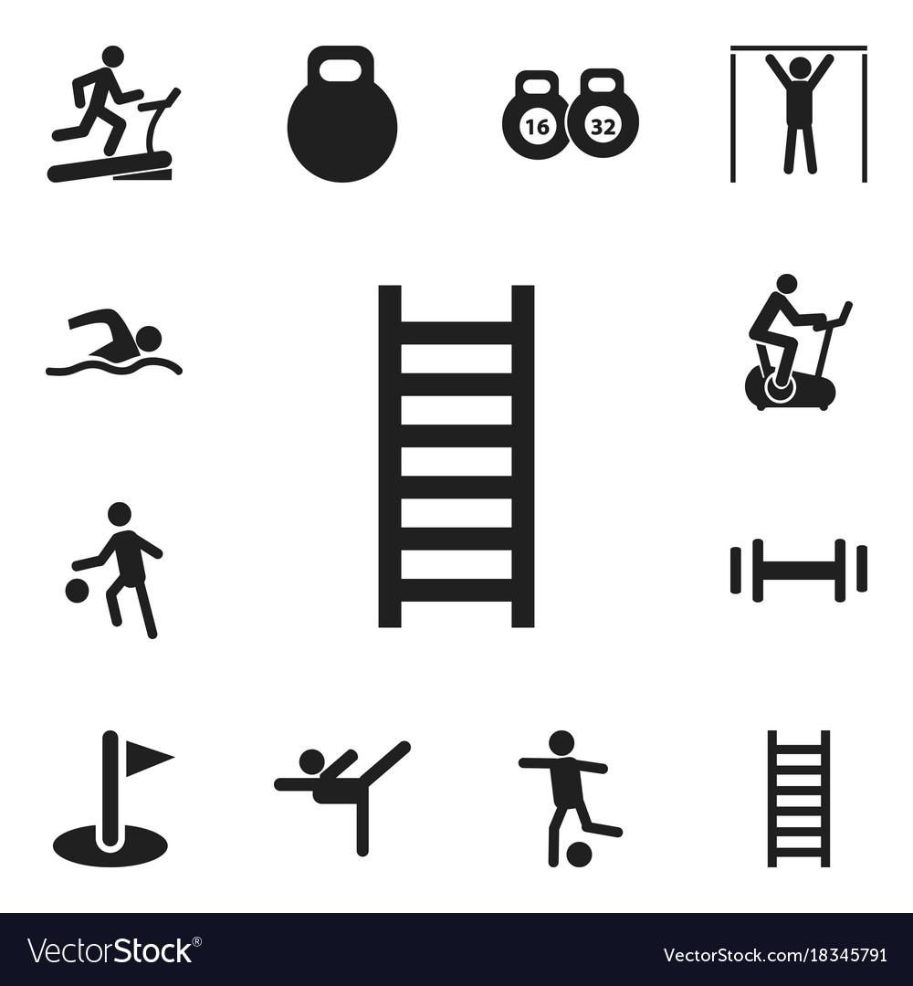 Set of 12 editable sport icons includes symbols vector image set of 12 editable sport icons includes symbols vector image biocorpaavc