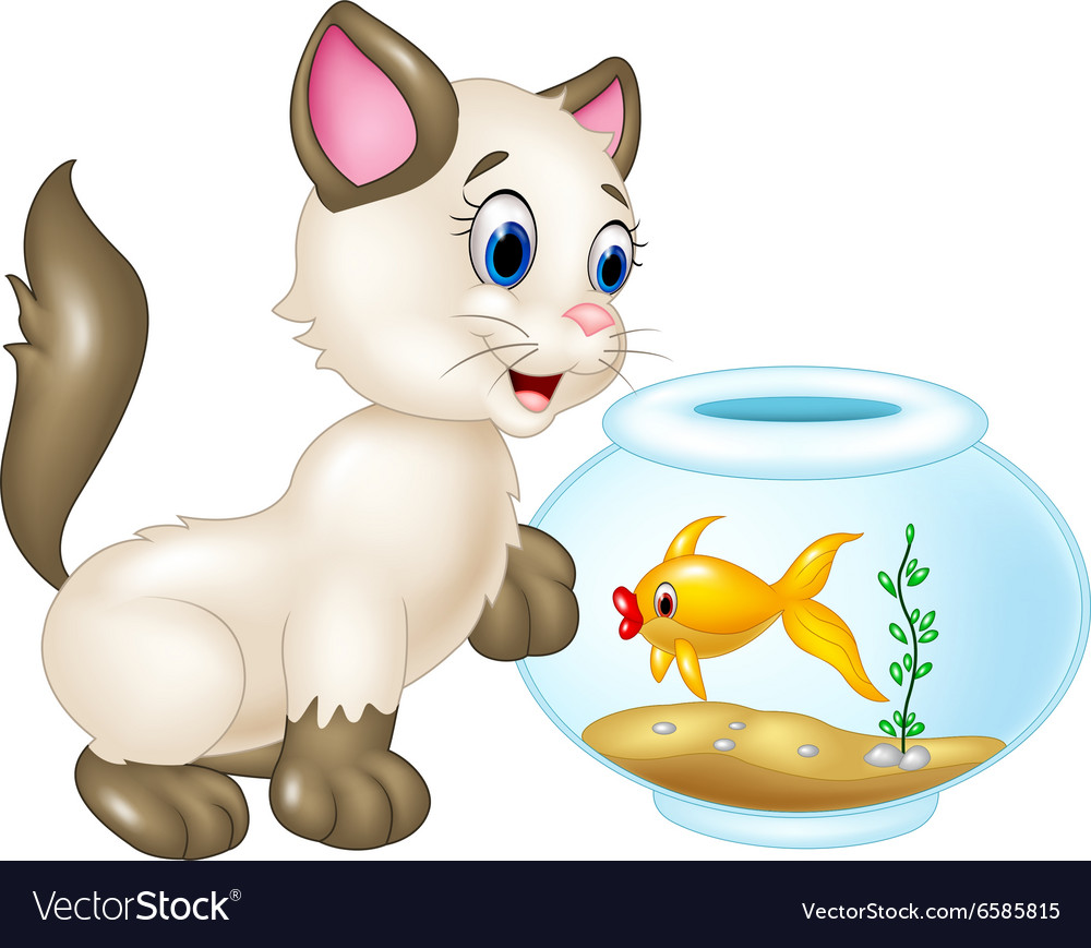 Curious cat playing with swimming fish isolated vector image