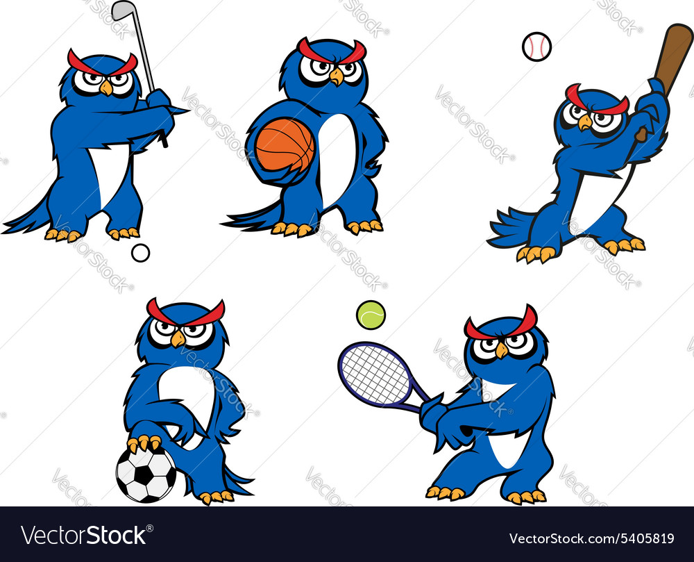 Blue cartoon owl player characters vector image