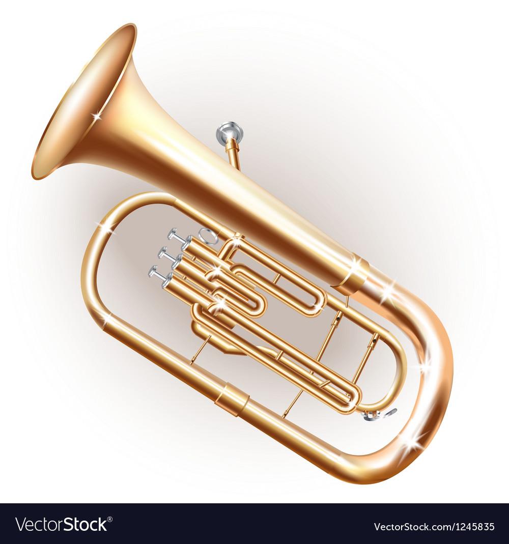 Classical Baritone horn Euphonium tuba vector image