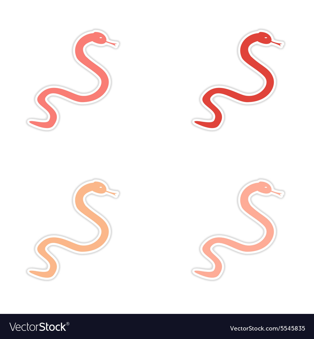 Assembly realistic sticker design on paper snakes