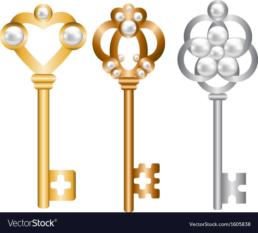 Antique metal skeleton keys set vector image
