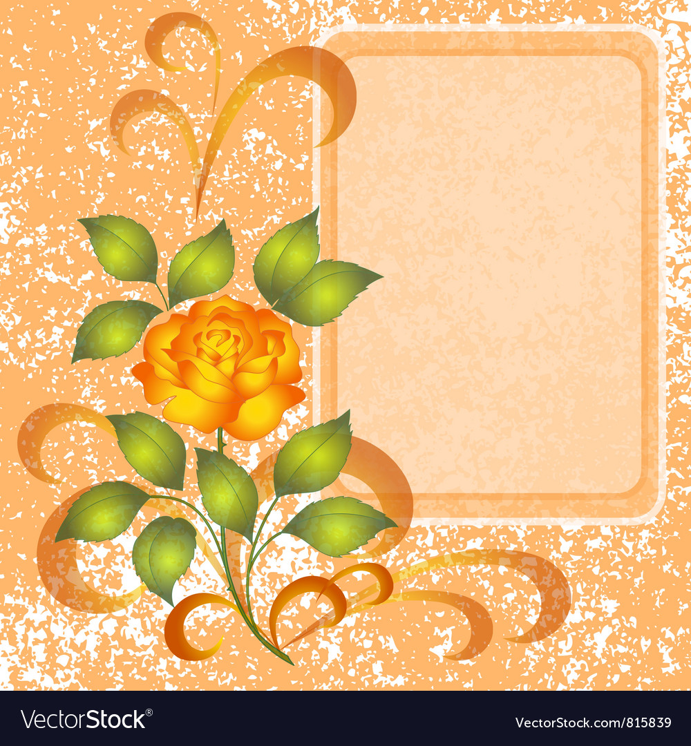 Background with rose and placard vector image