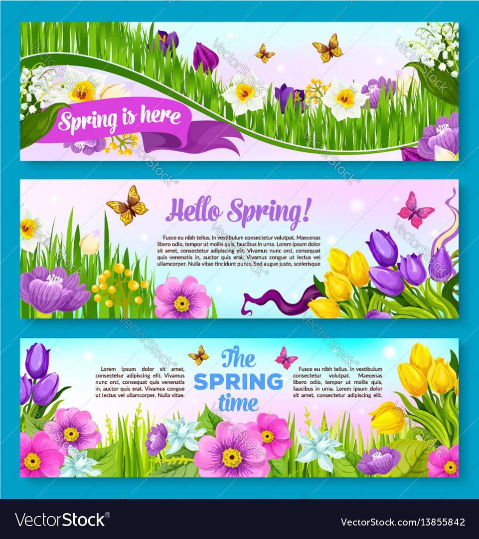 Spring flower greeting banner set design vector image
