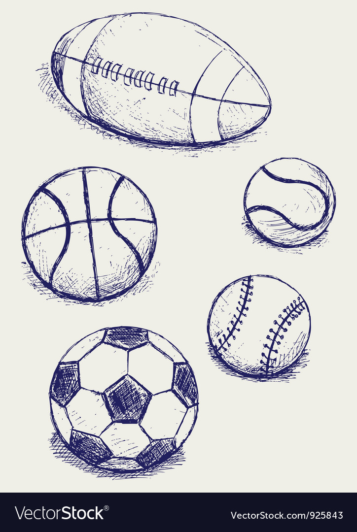 Balls for sports vector image