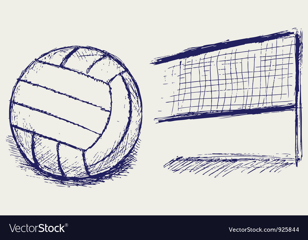 Ball for sports vector image