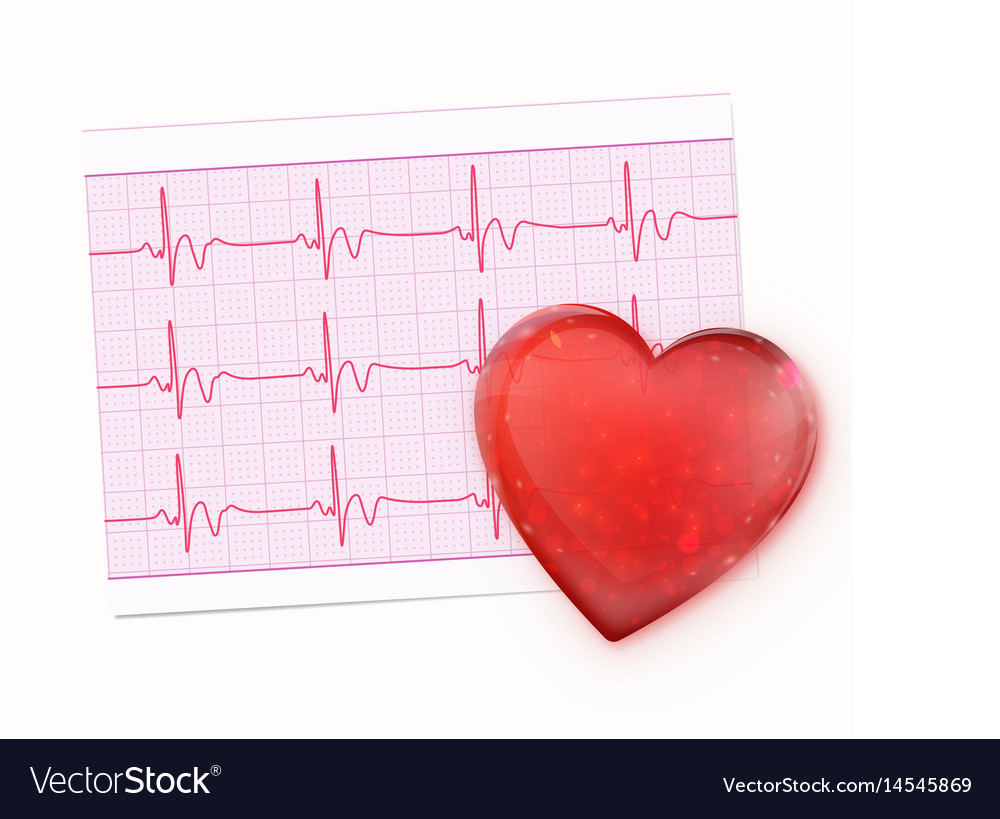 Electrocardiogram record paper vector image