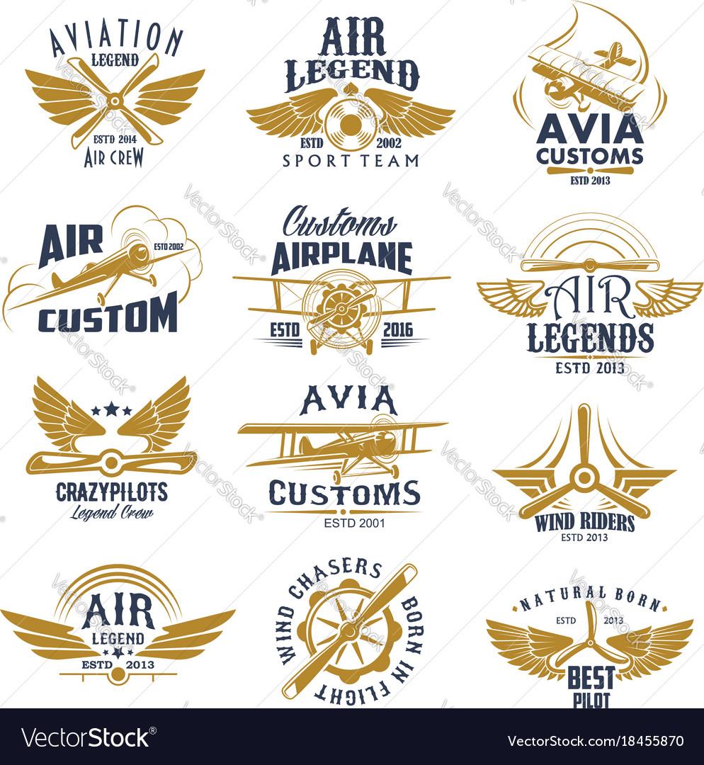Aviation airplane legend team retro icons vector image