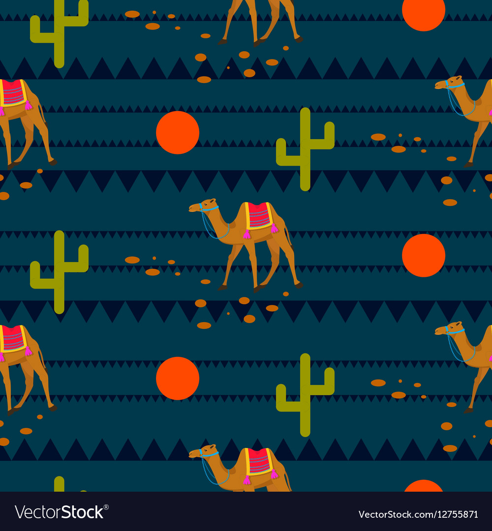 Desert camels on ethnic night blue pattern vector image