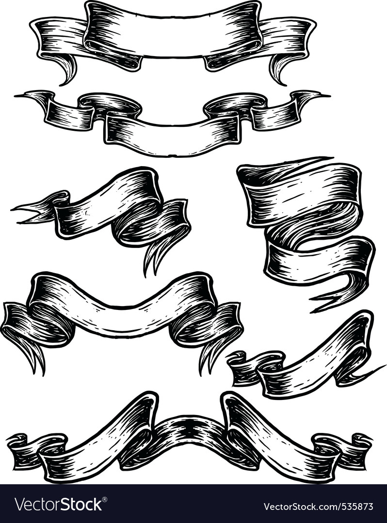 sketch scroll banner royalty free vector image