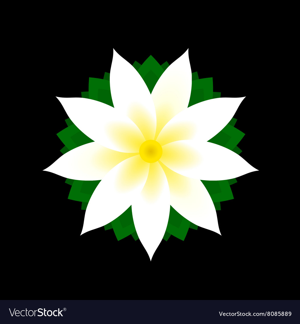 Jasmine Flower Icon On Black Background Royalty Free Vector