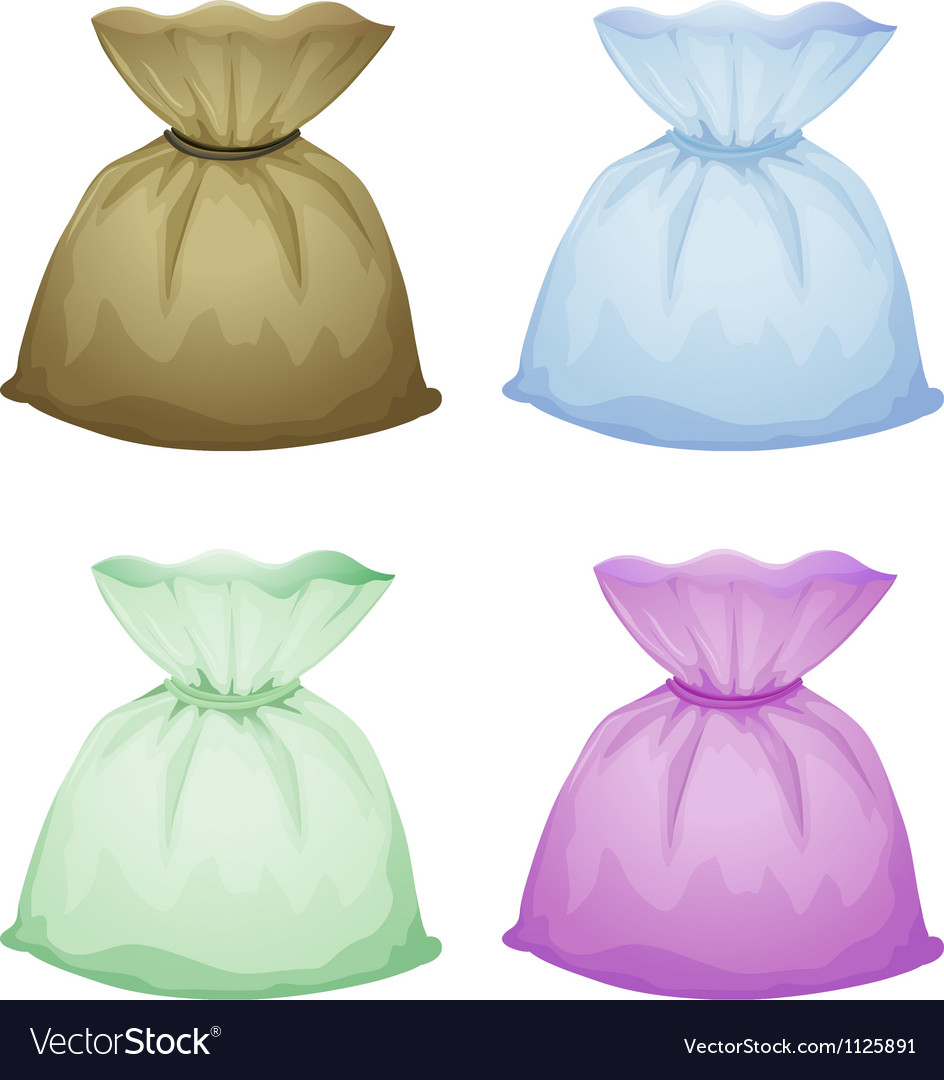 Pouches vector image