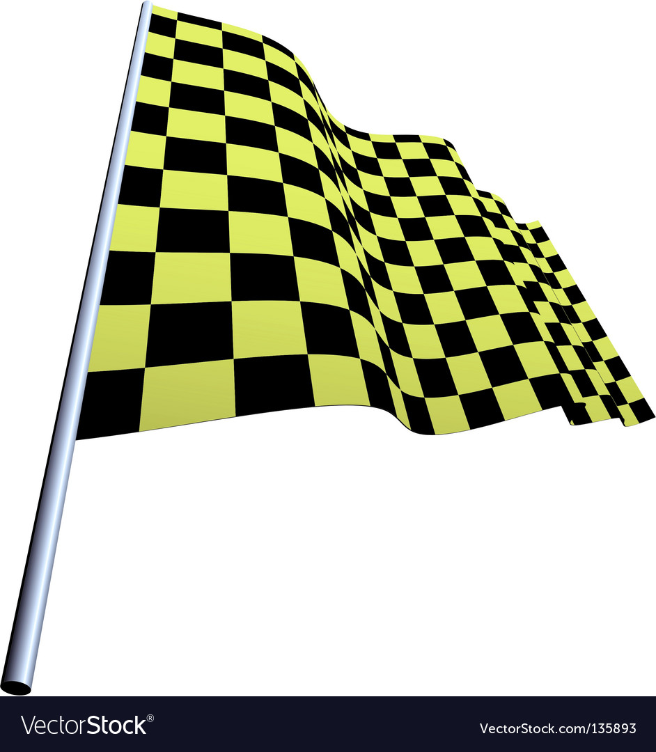 Checked flags vector image