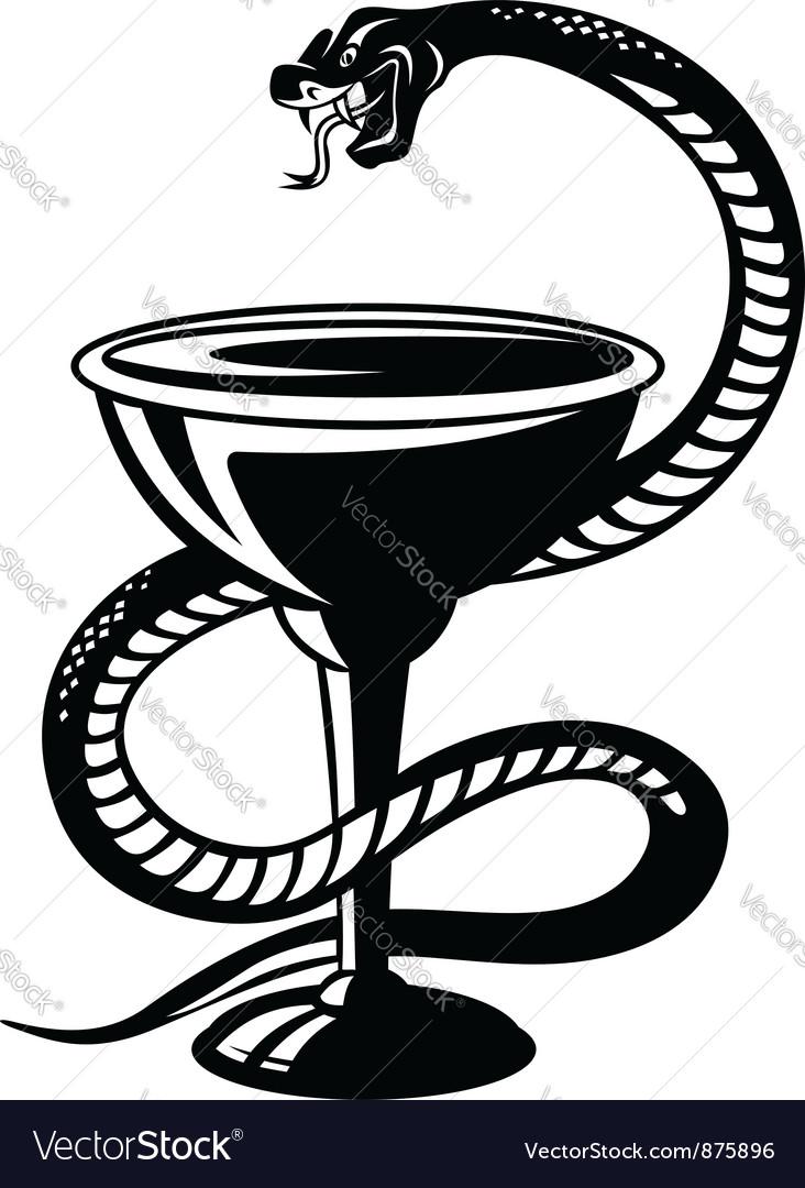 Medicine symbol snake on cup royalty free vector image medicine symbol snake on cup vector image buycottarizona