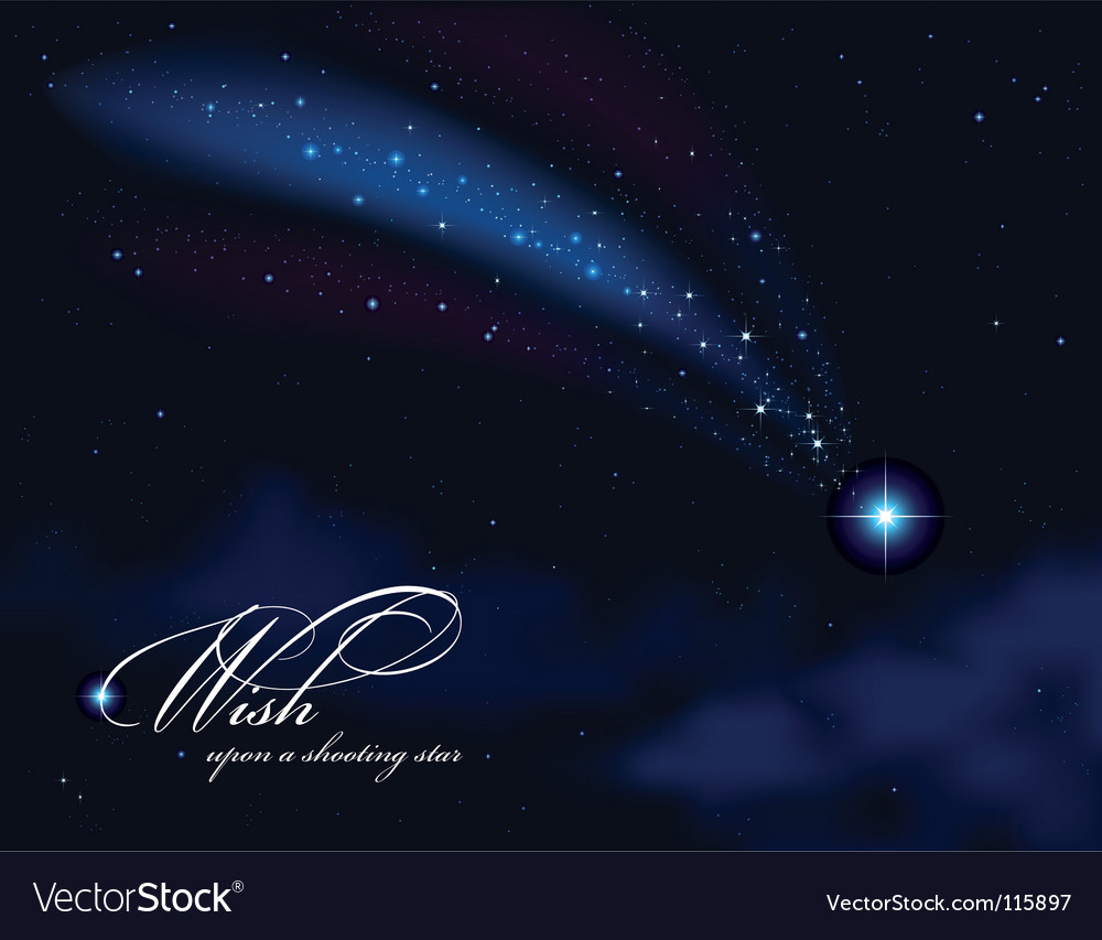Wish upon a shooting star vector image