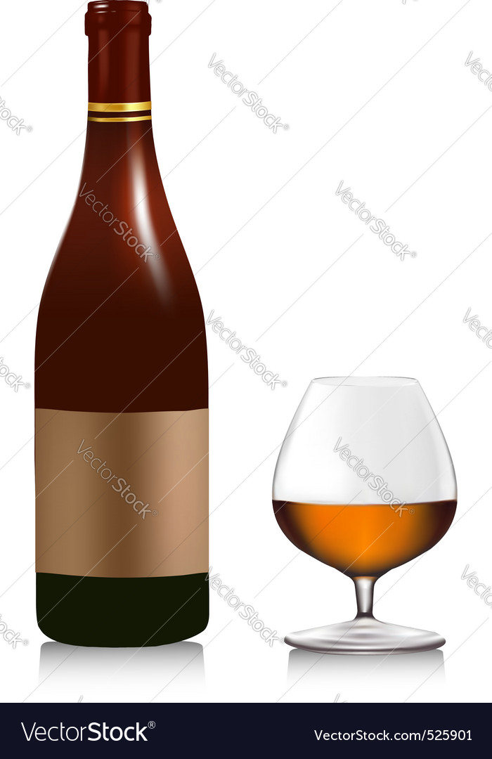 Bottel with whiski and glass vector image