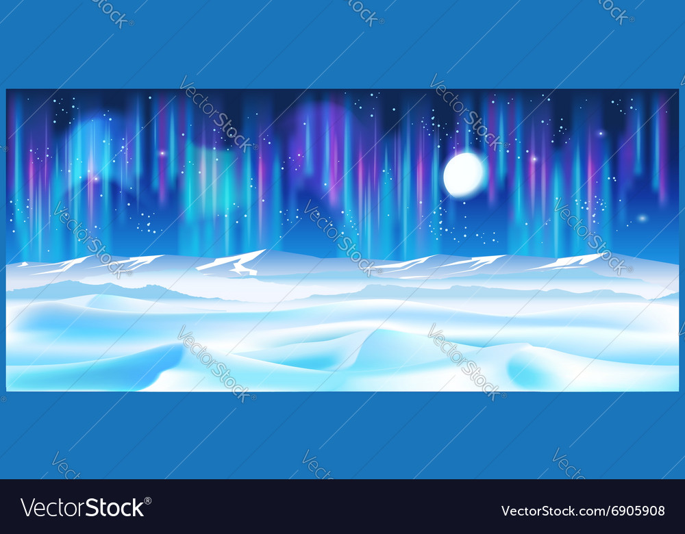 Northern landscape at night vector image