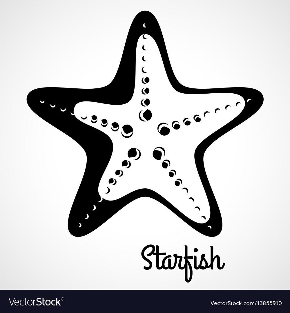 Logo black starfish vector image