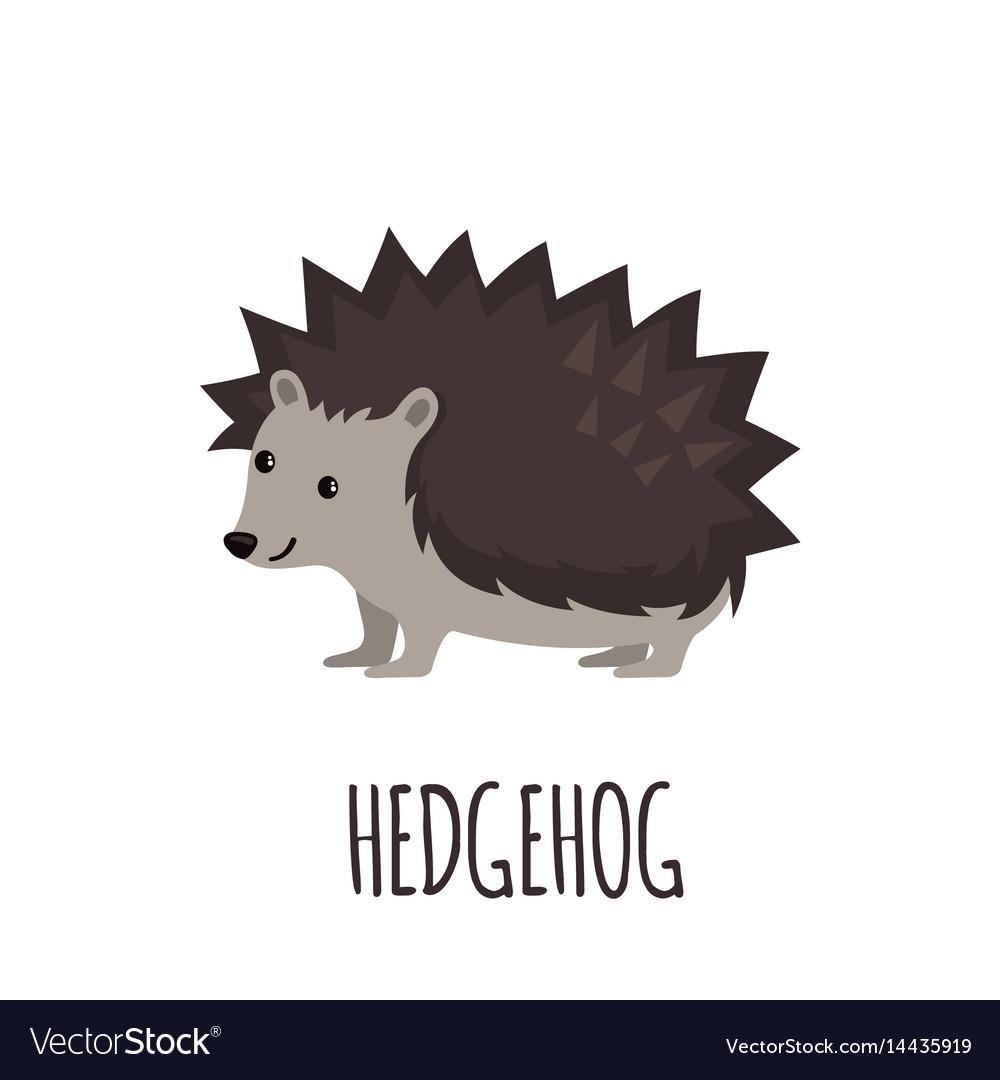 Cute hedgehog in flat style vector image