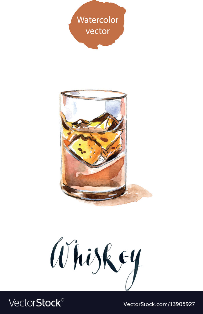 Glass with whiskey and ice vector image