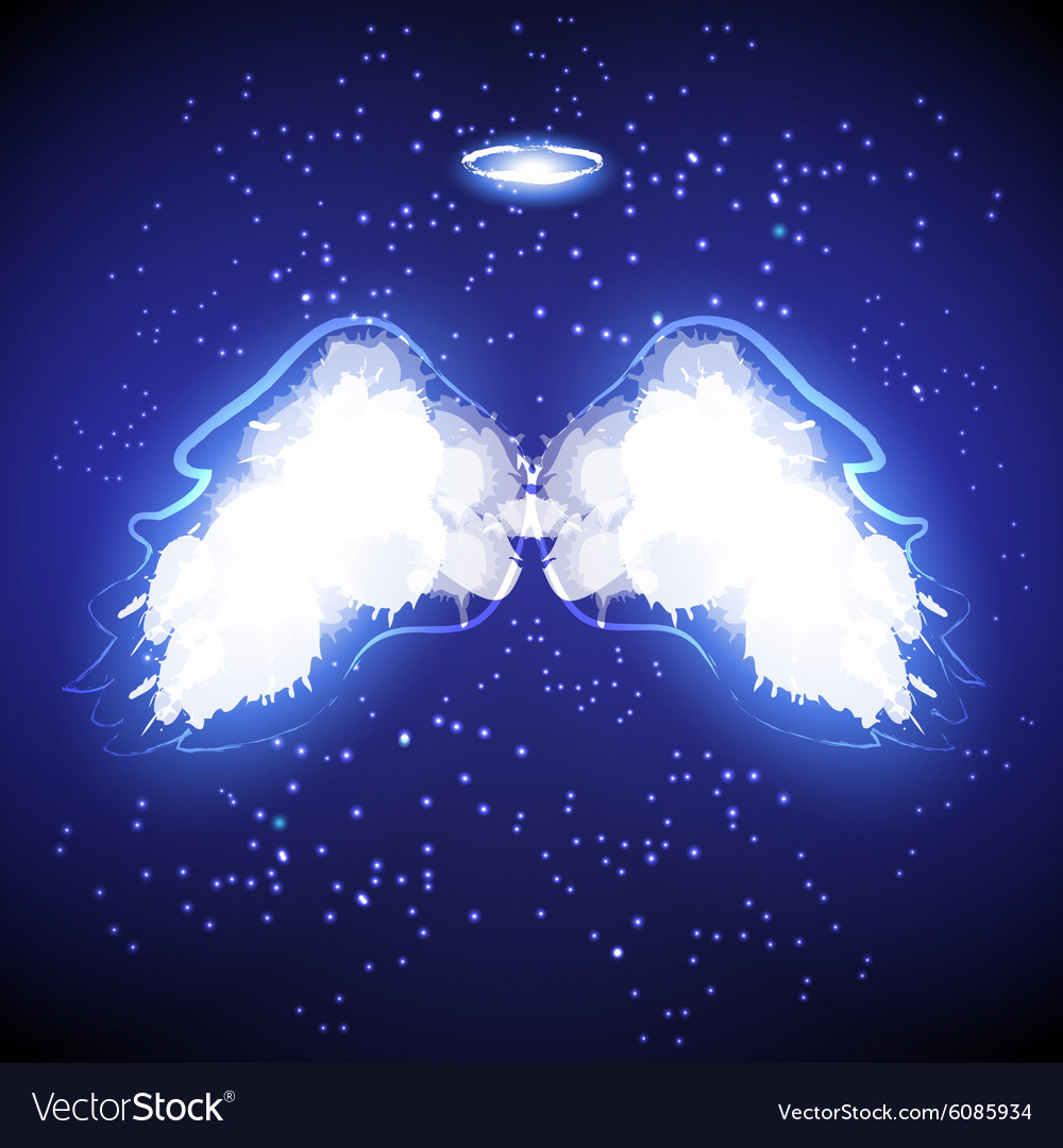 Angel nimbus and wings on black background vector image