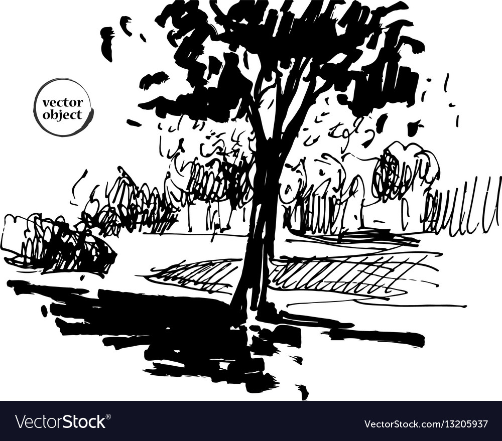 Ink of growing trees with some grass vector image