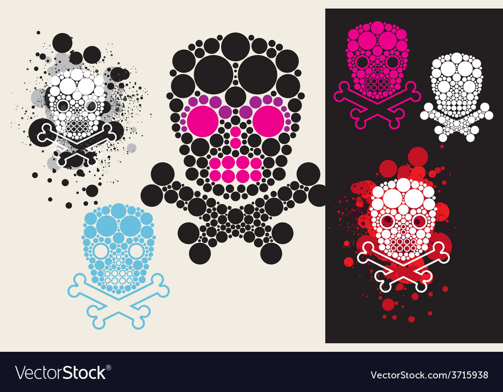 Circle scull vector image