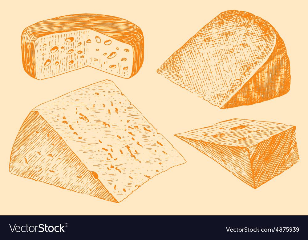 Cheese Set Engraving Hand Drawn Vintage vector image