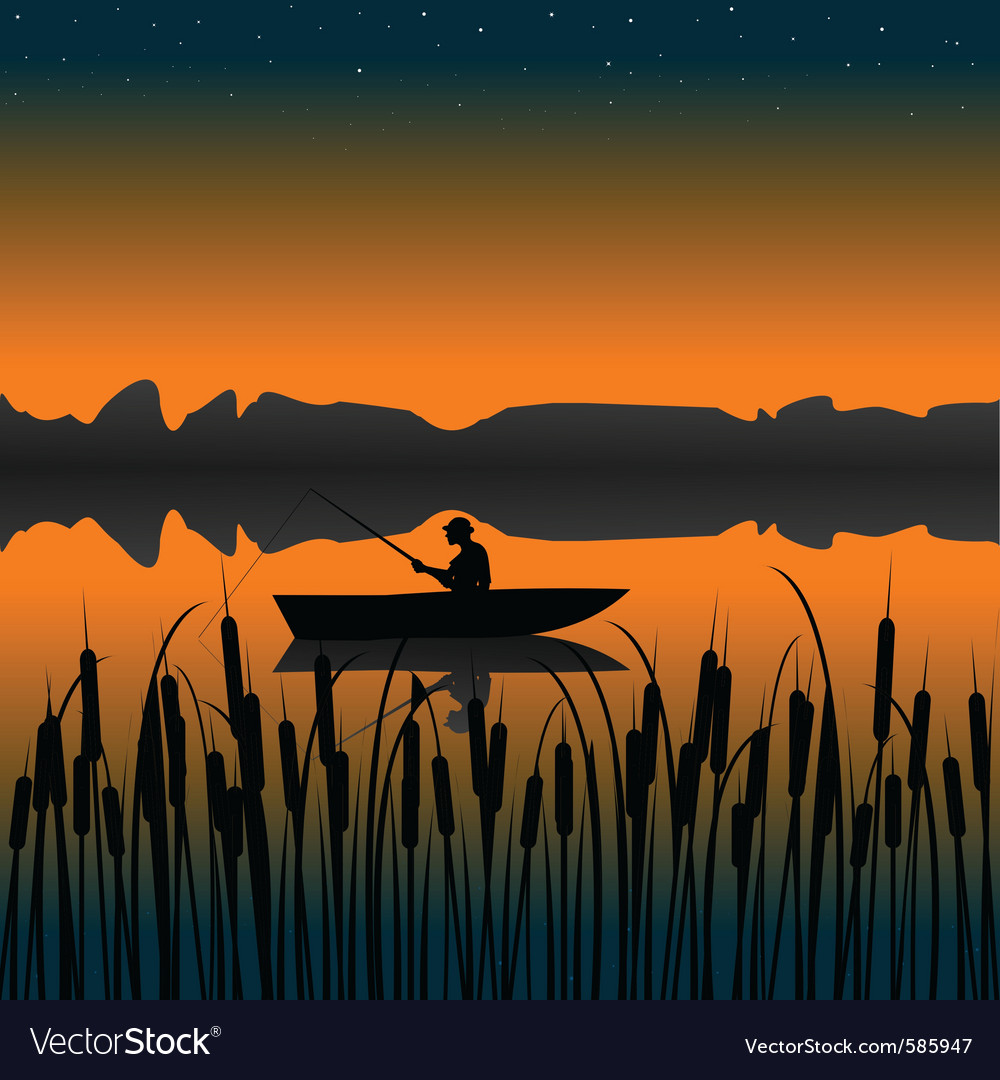 Night fishing landscape vector image