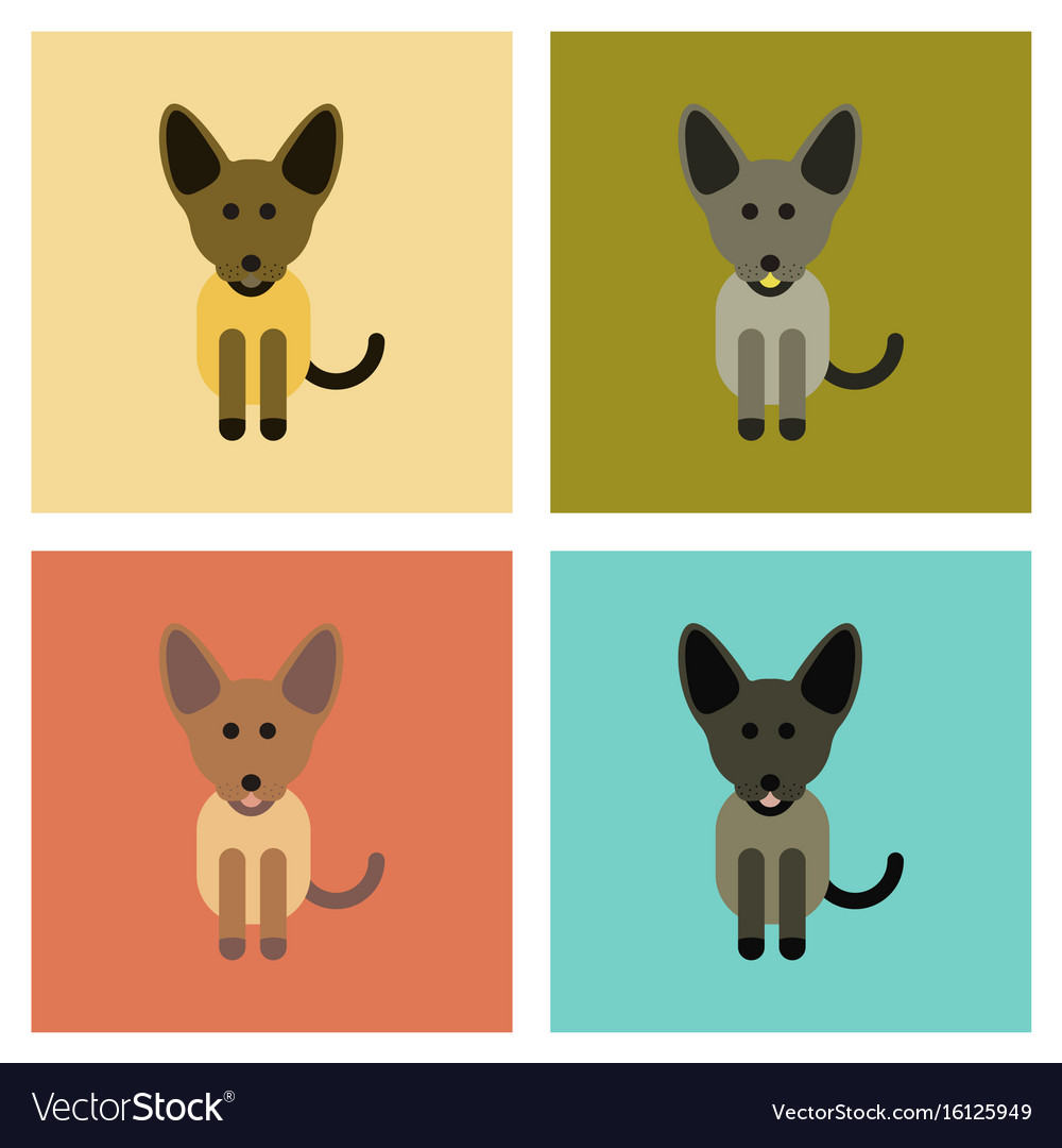Assembly flat icons pet dog vector image