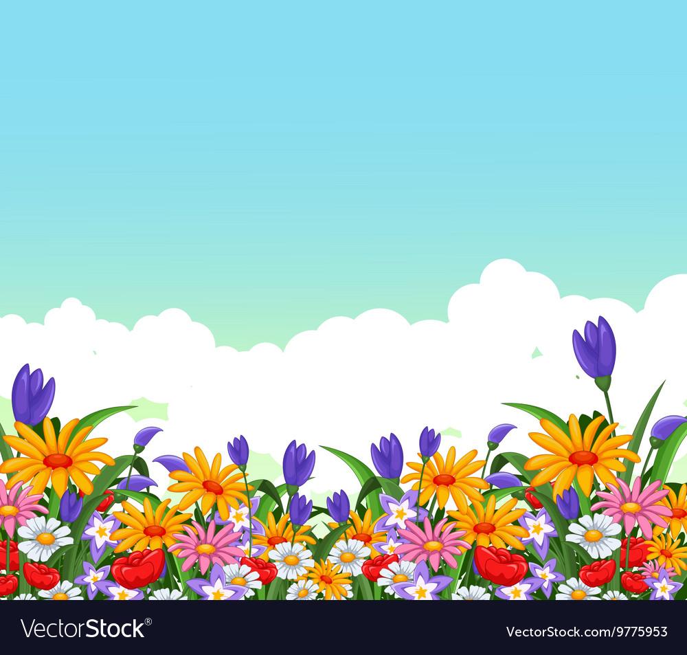 Flowers garden for you design vector image
