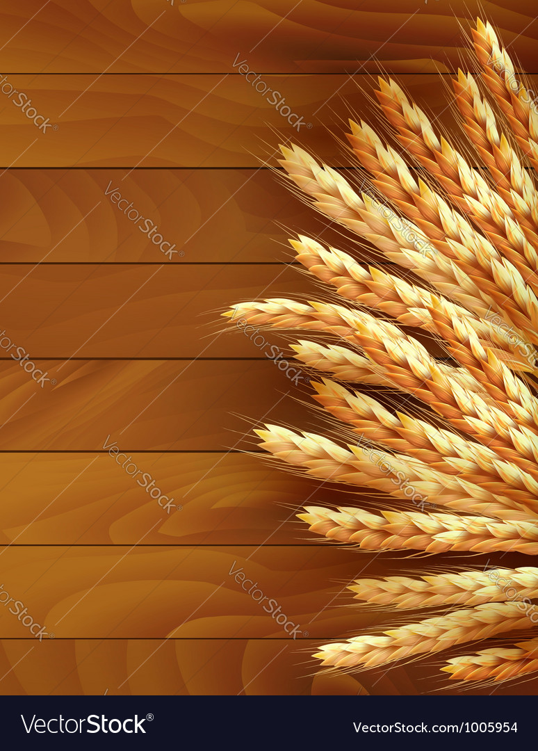 Ears of wheat on wooden background vector image