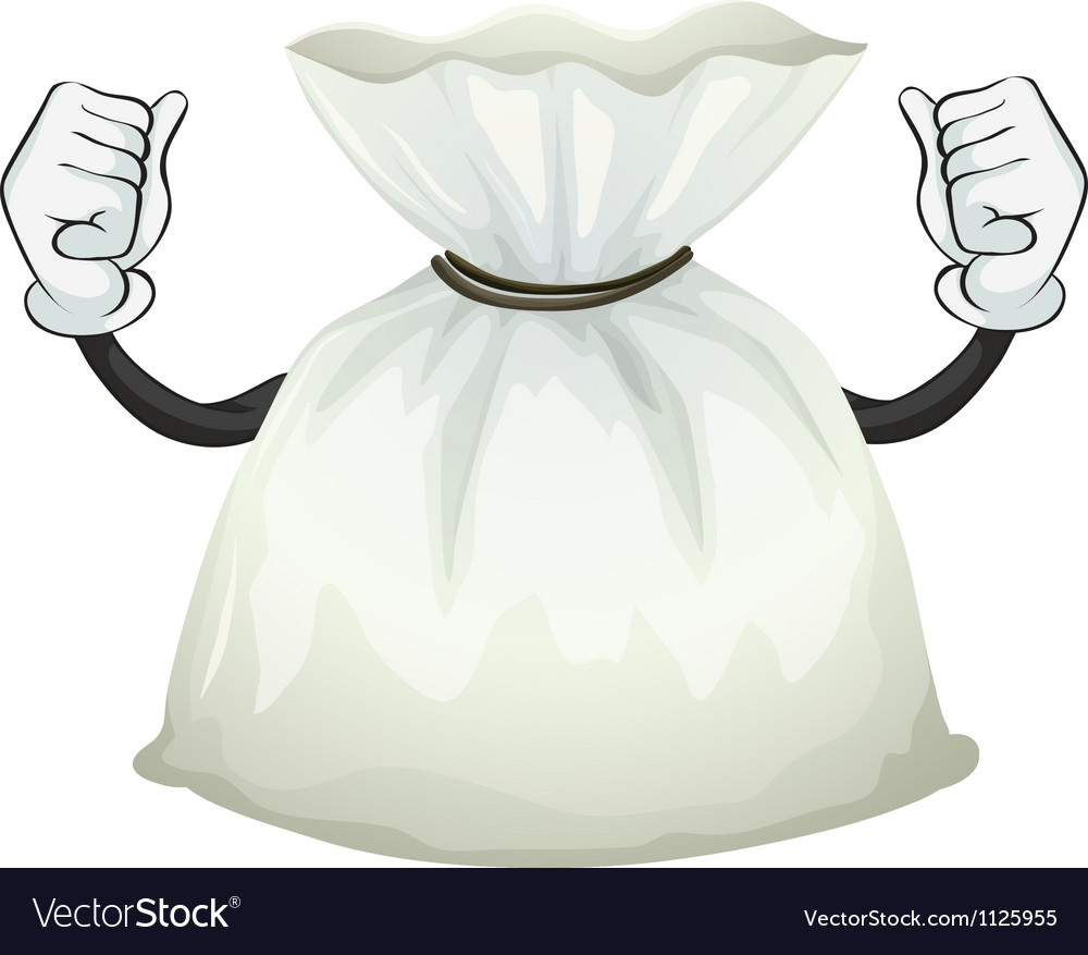 A pouch vector image