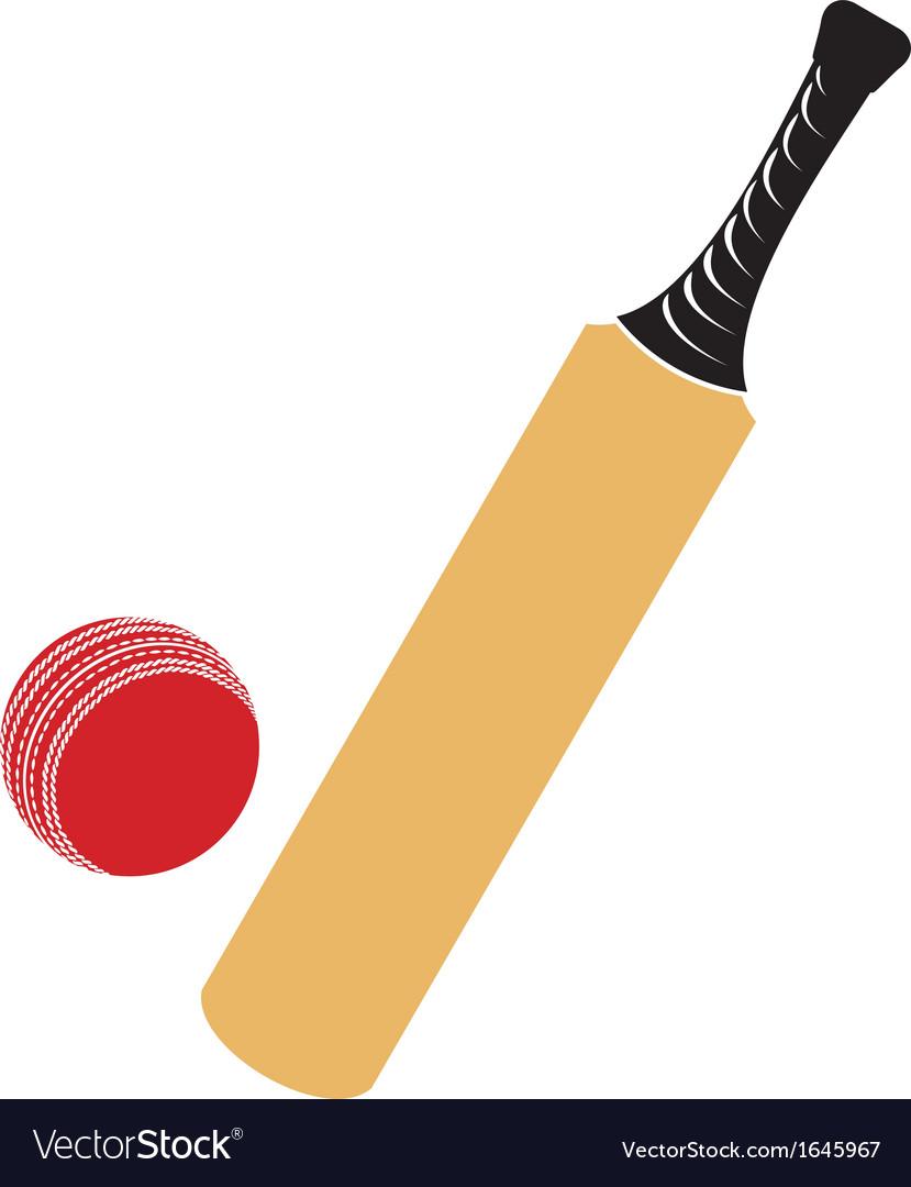 Cricket bat and cricket ball vector image