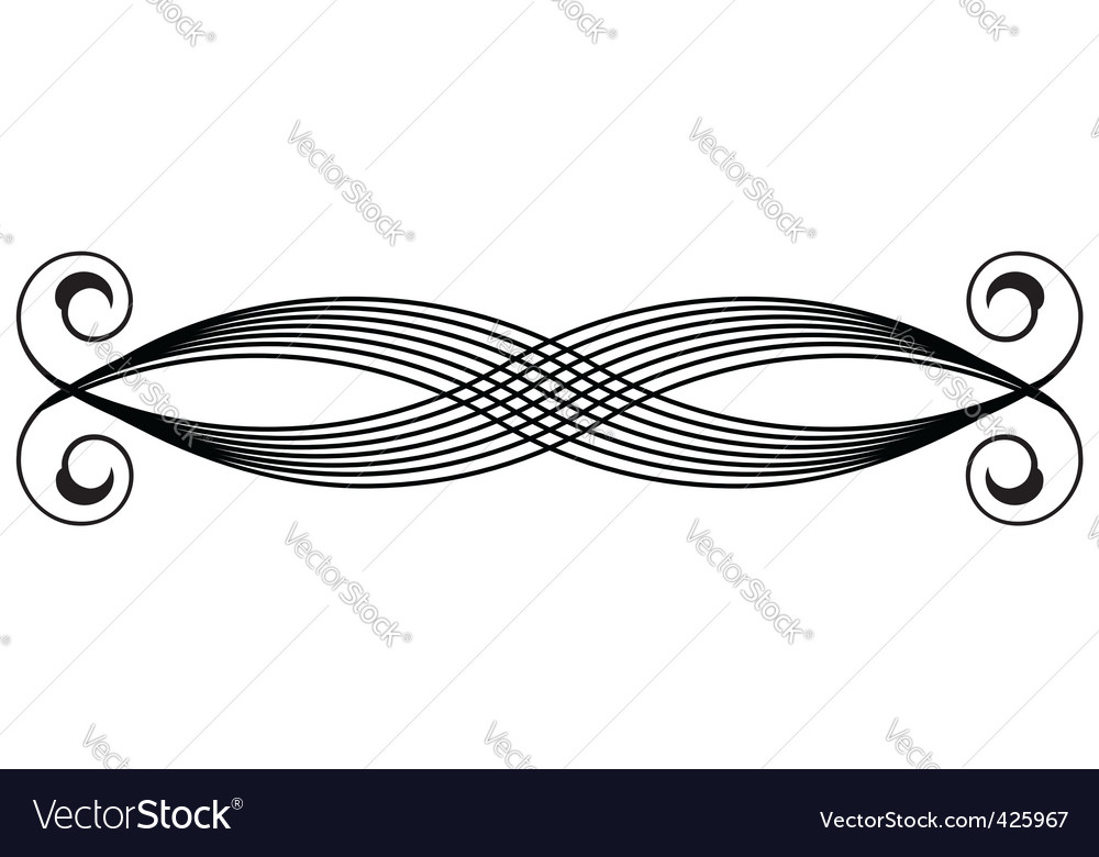 Ornate scroll vector image