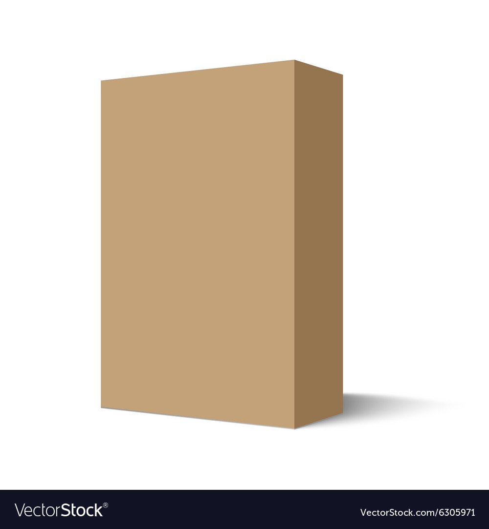 Mockup cardboard package box vector image