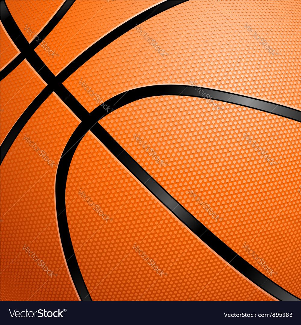 Closeup of a Basketball vector image