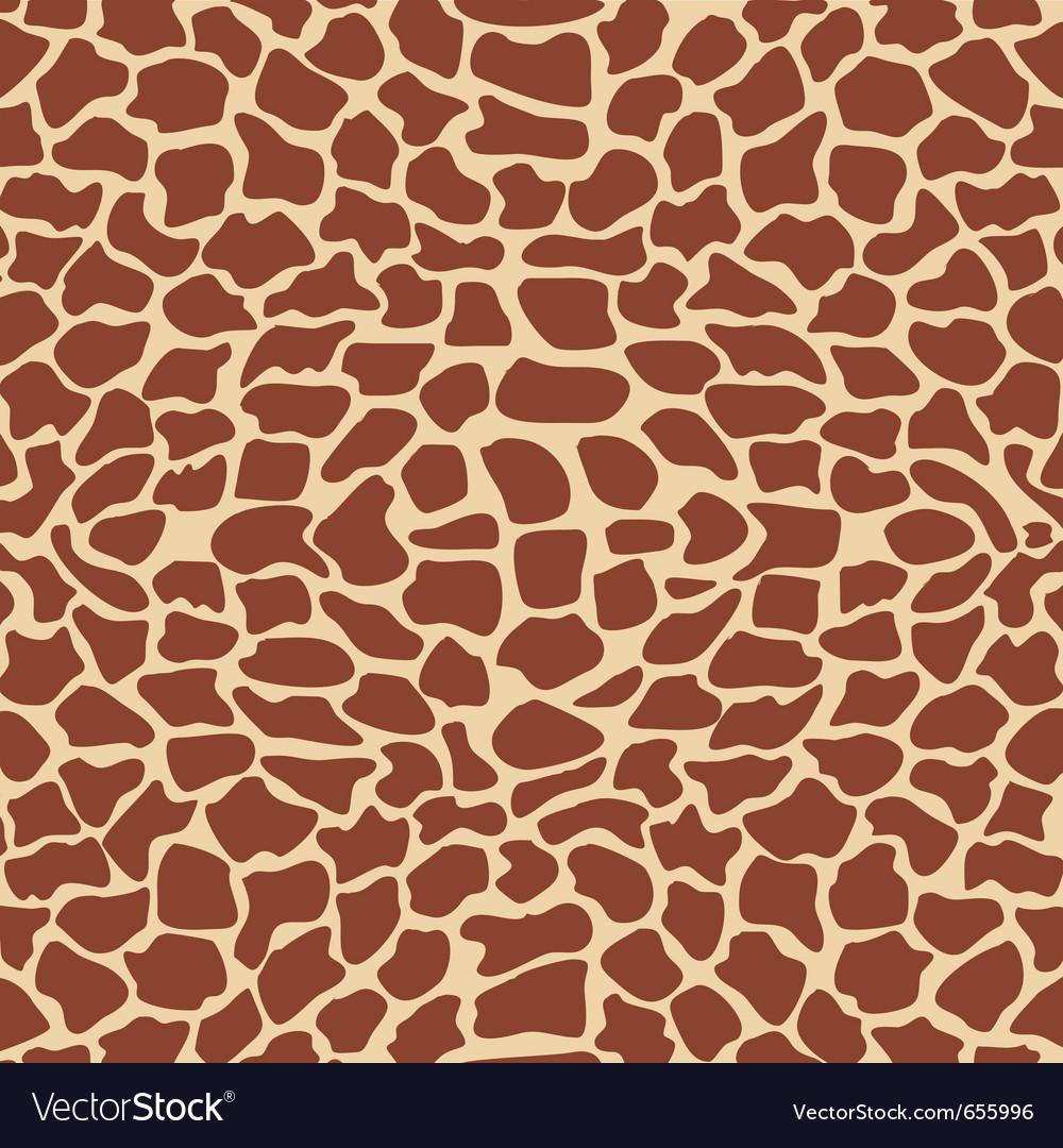 Giraffe textures vector image