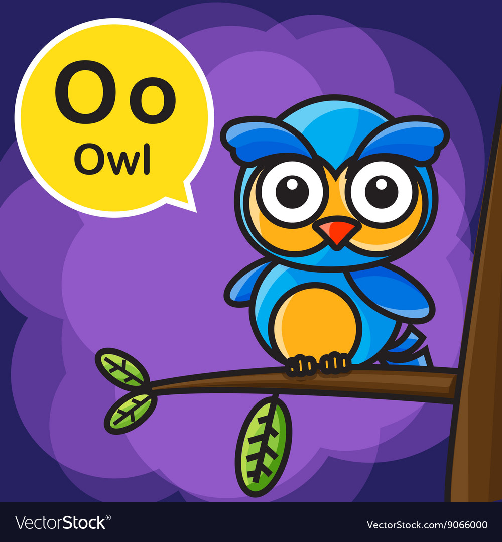 O Owl color cartoon and alphabet for children to vector image