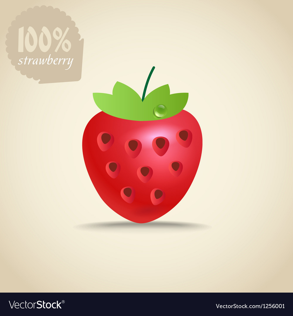 Cute fresh strawberry vector image