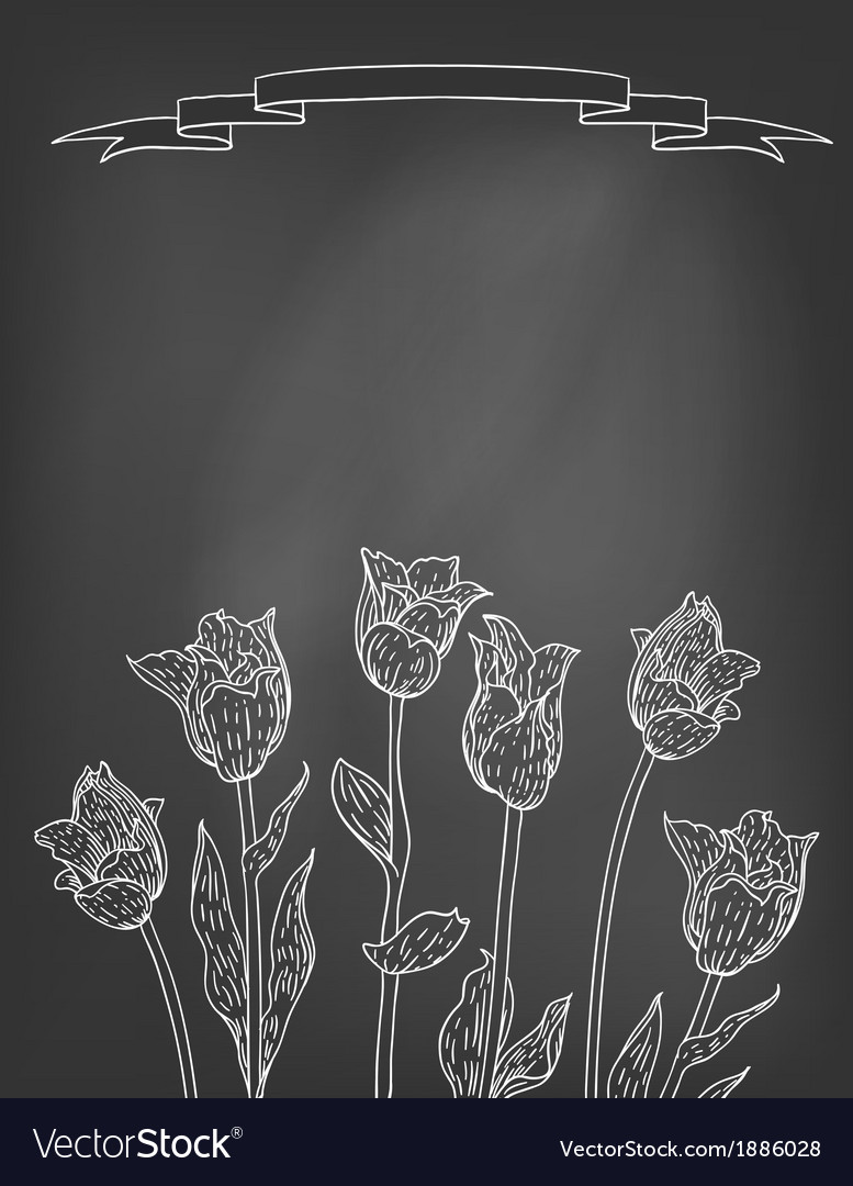 Card with tulips on chalkboard vector image
