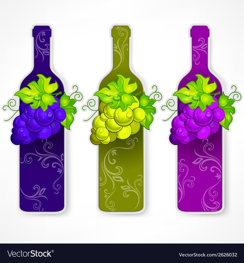 Bottle wine with grapes and vector image