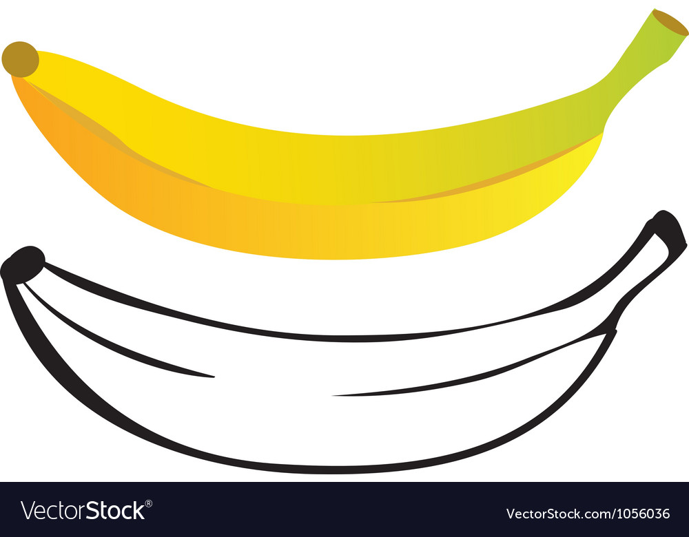 Banana color and outline vector image