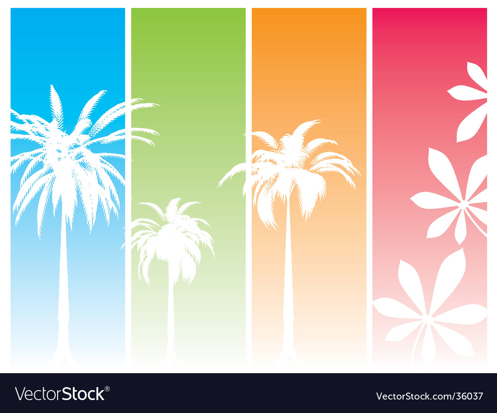 Summer dream vector image