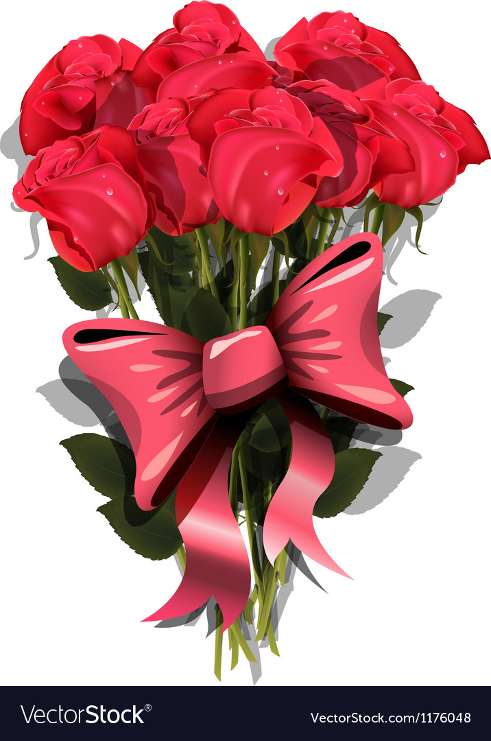 Bouquet of roses with a bow vector image